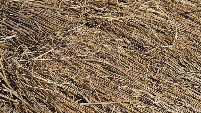 牧場の敷藁